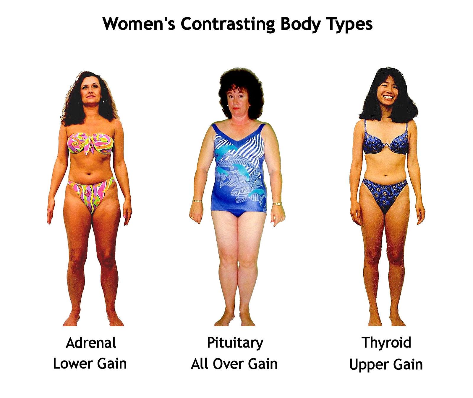 female_body_shapes.jpg
